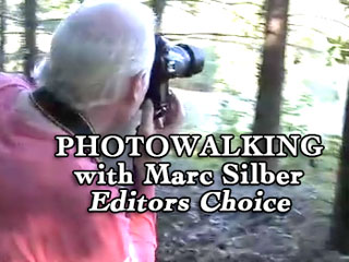 Highlights of Photowalk with professional photographer Marc Silber